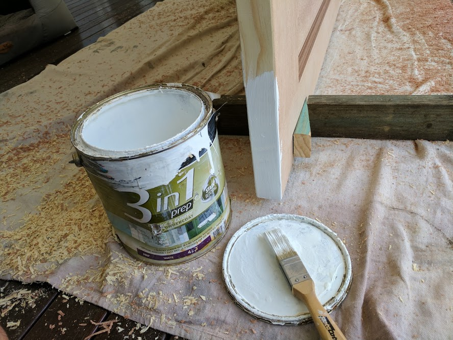Painting Bathroom Walls mould resistant